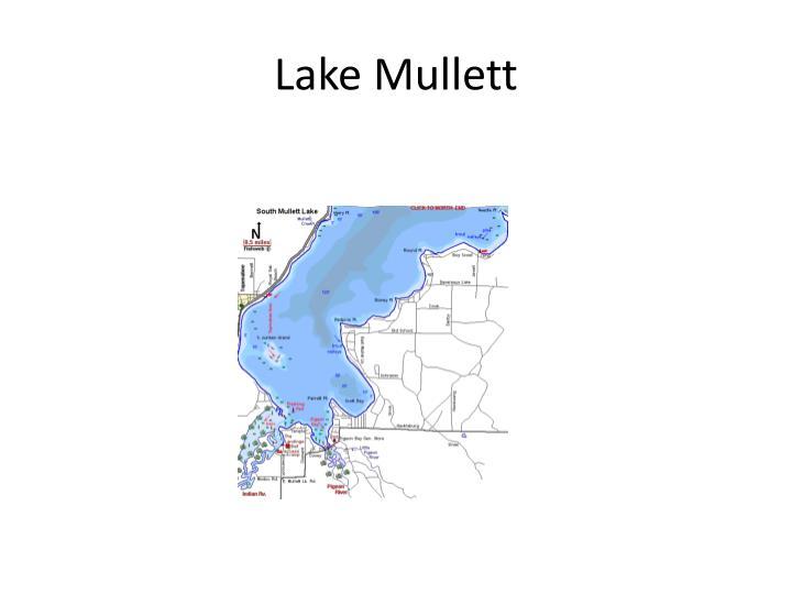 Lake Mullett