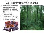 gel electrophoresis cont