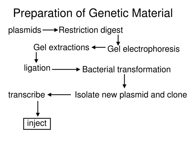 Preparation of Genetic Material
