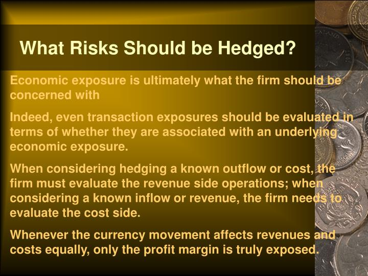 What Risks Should be Hedged?