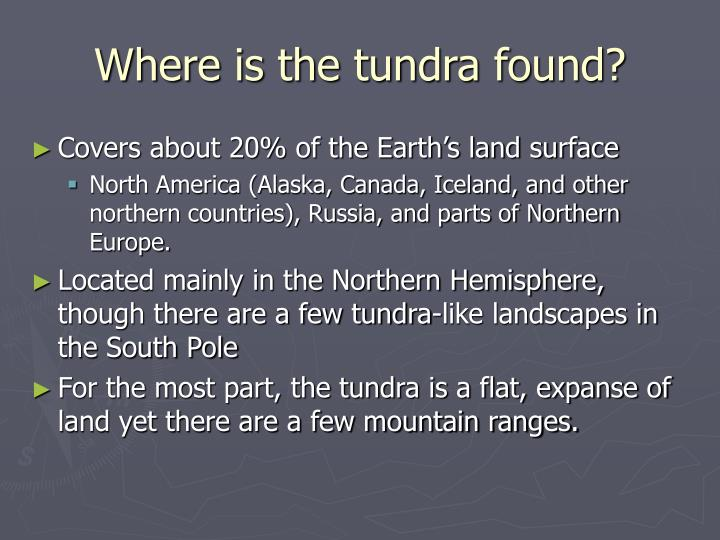 Where is the tundra found?