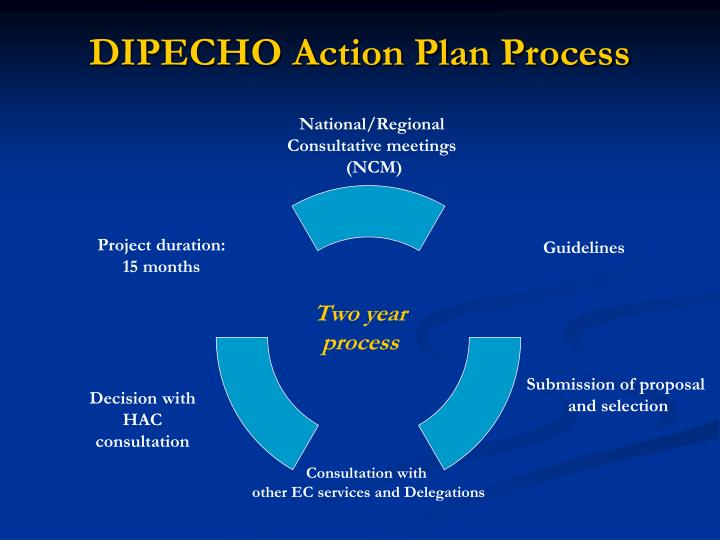 DIPECHO Action Plan Process