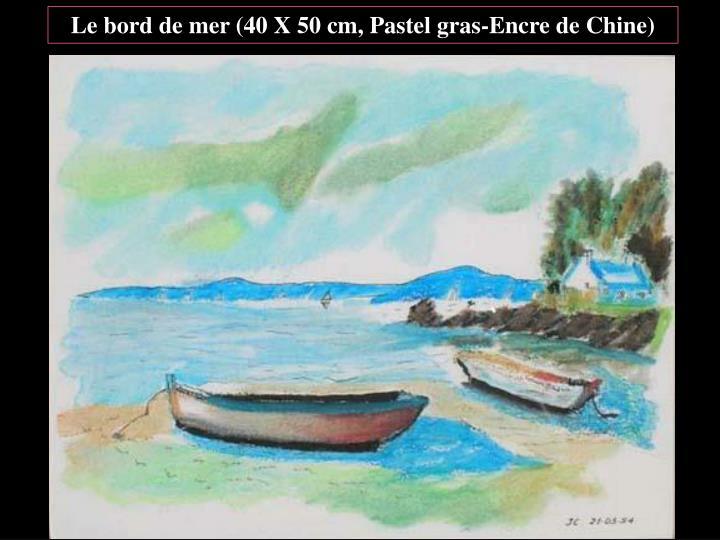 Le bord de mer (40 X 50 cm, Pastel gras-Encre de Chine)