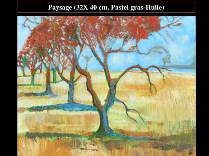 Paysage (32X 40 cm, Pastel gras-Huile)