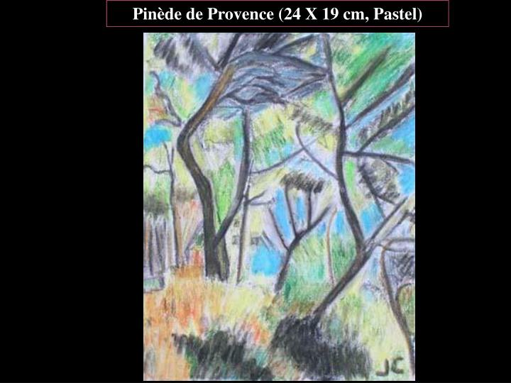 Pinède de Provence (24 X 19 cm, Pastel)
