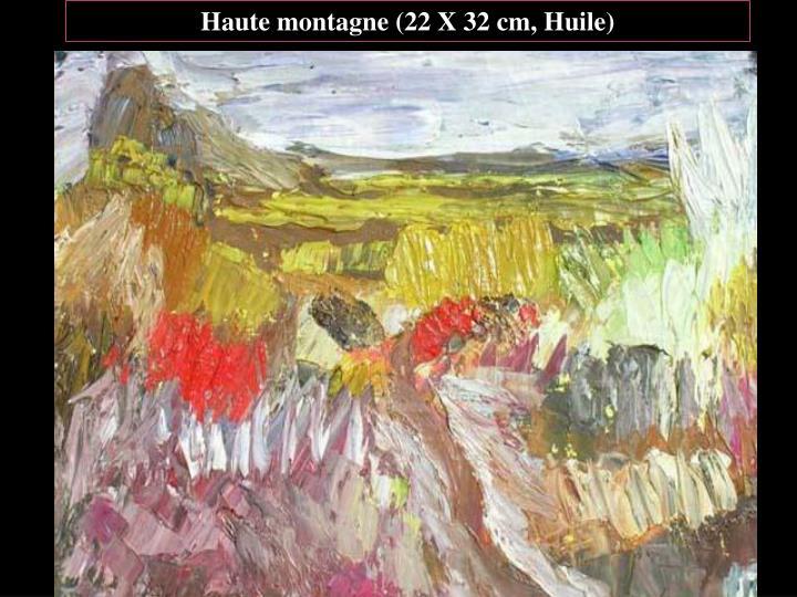 Haute montagne (22 X 32 cm, Huile)