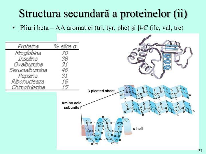 Structura secundară a proteinelor (ii)