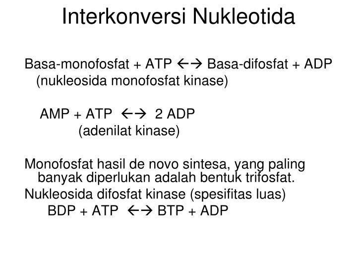 Interkonversi Nukleotida