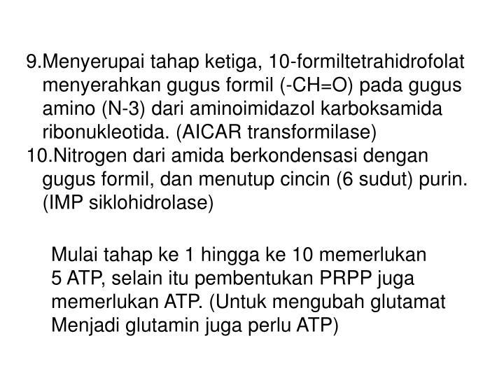 9.Menyerupai tahap ketiga, 10-formiltetrahidrofolat