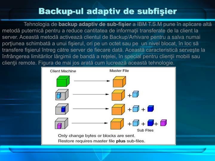 Backup-ul adaptiv de subfişier