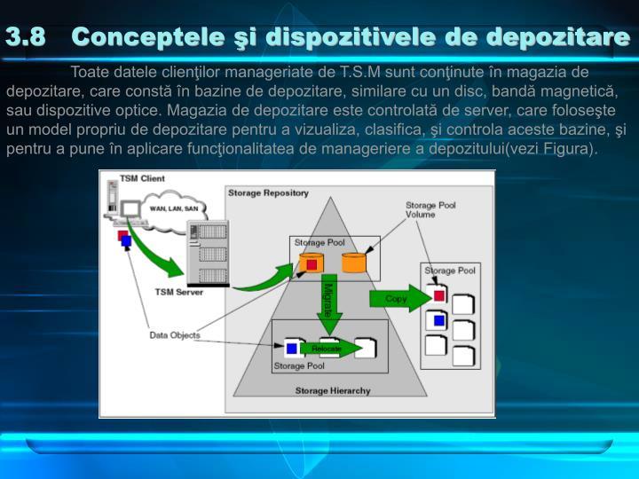 3.8   Conceptele şi dispozitivele de depozitare
