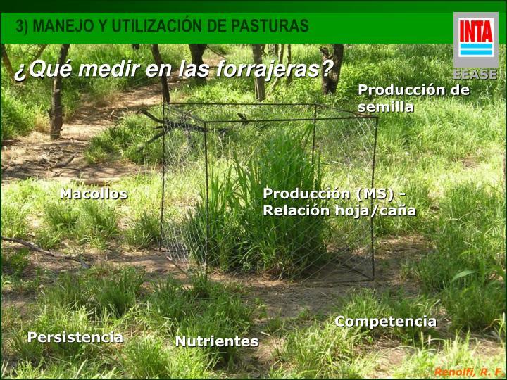3) MANEJO Y UTILIZACIÓN DE PASTURAS