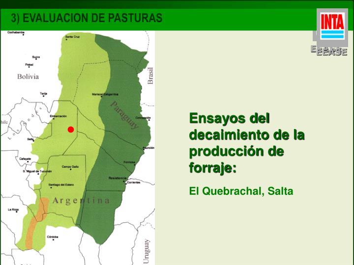 3) EVALUACION DE PASTURAS