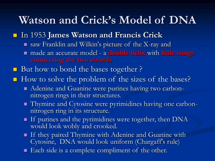 watson and crick essay James watson and francis crick the molecule that is the basis for heredity, dna, contains the patterns for constructing proteins in the body, including the various enzymes life story, which is an essay about the race to find the structure and function of the dna macromolecule.