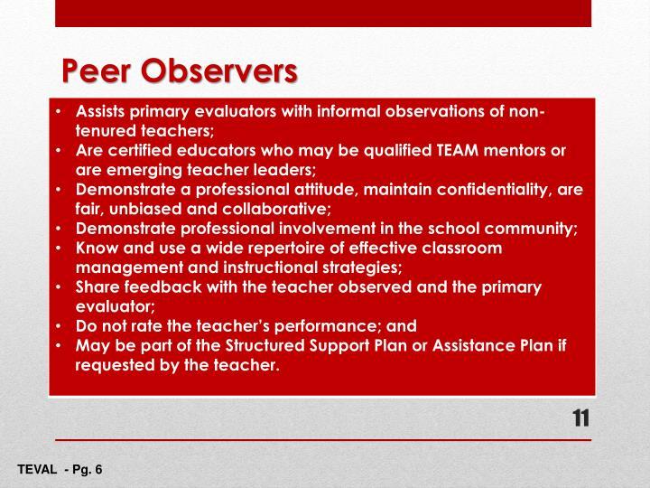 Peer Observers