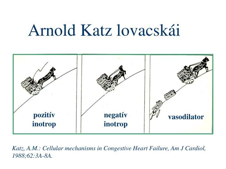 Arnold Katz lovacskái