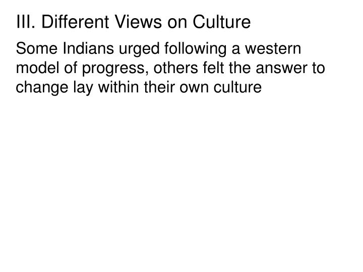 III. Different Views on Culture