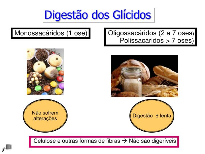 Digestão dos Glícidos