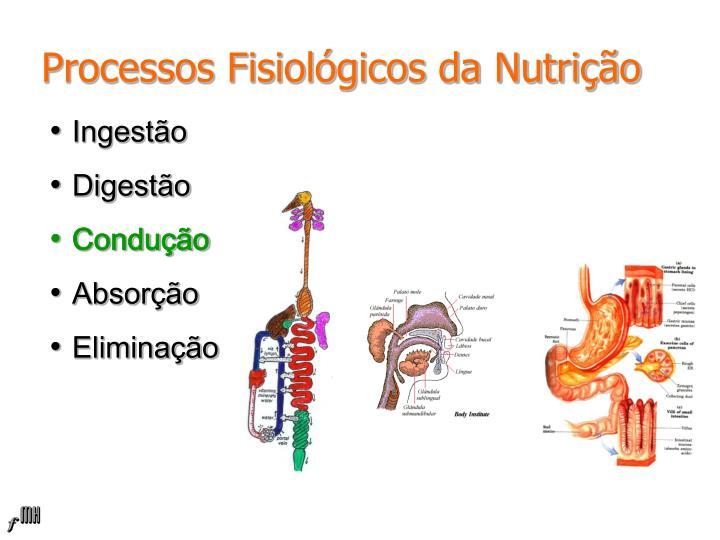 Processos Fisiológicos da Nutrição
