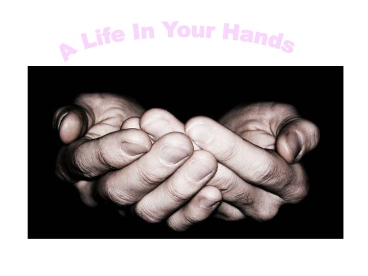 A Life In Your Hands