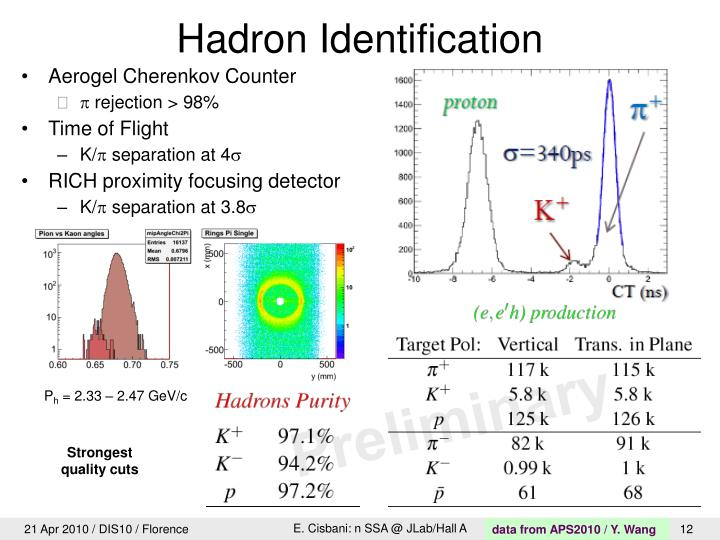 Hadron Identification