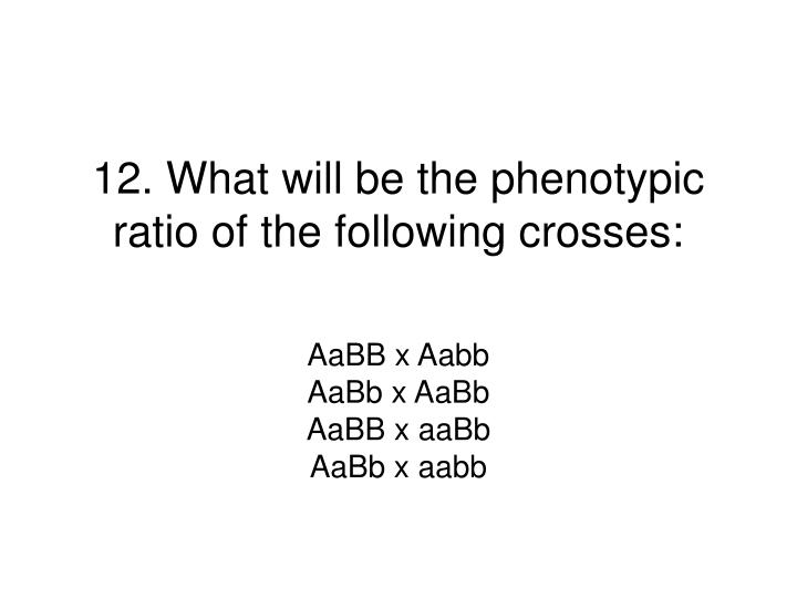 12. What will be the phenotypic ratio of the following crosses: