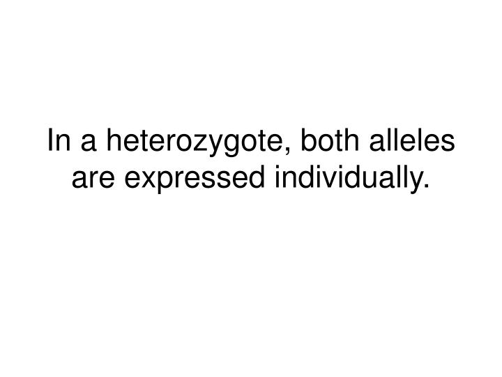 In a heterozygote, both alleles are expressed individually.