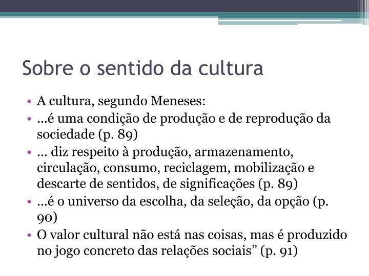 Sobre o sentido da cultura