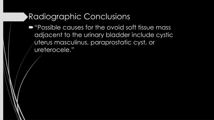 Radiographic Conclusions