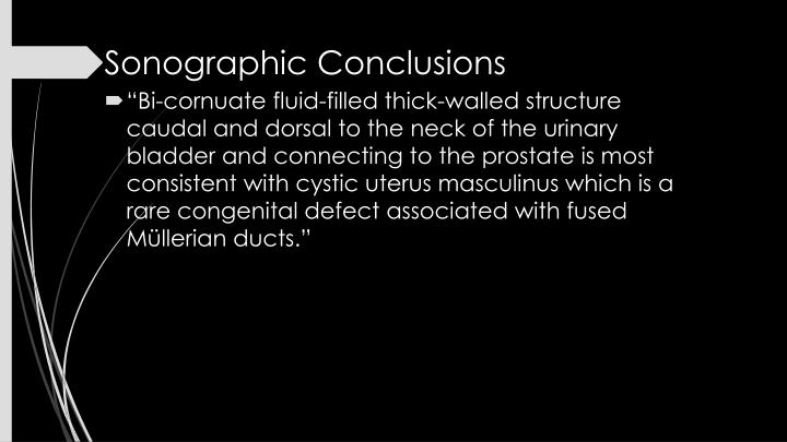 Sonographic Conclusions