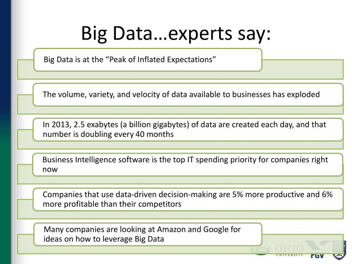 Big Data…experts say: