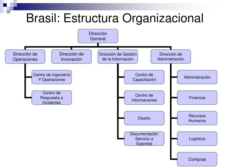 Brasil: Estructura Organizacional