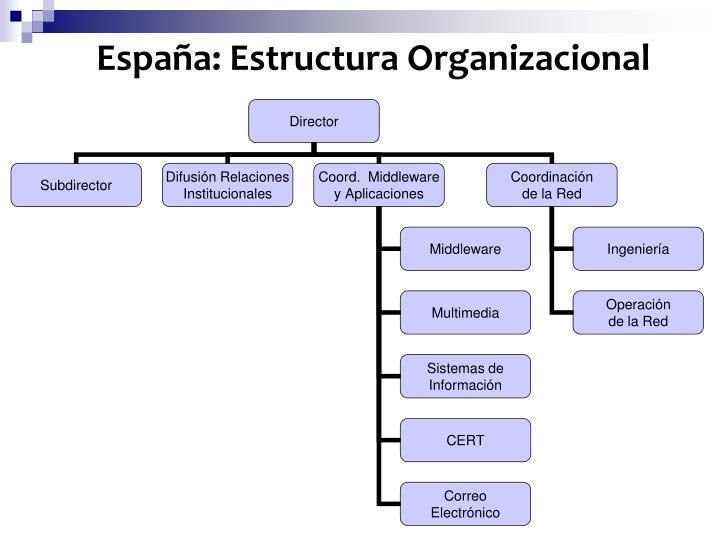 España: Estructura Organizacional