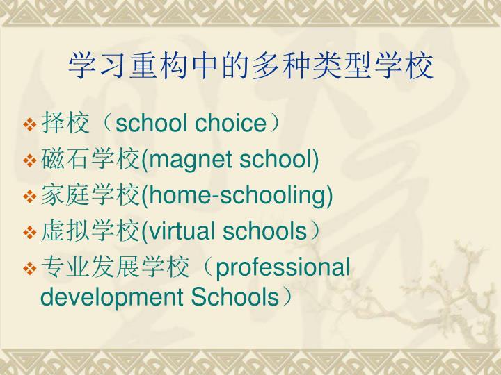 学习重构中的多种类型学校