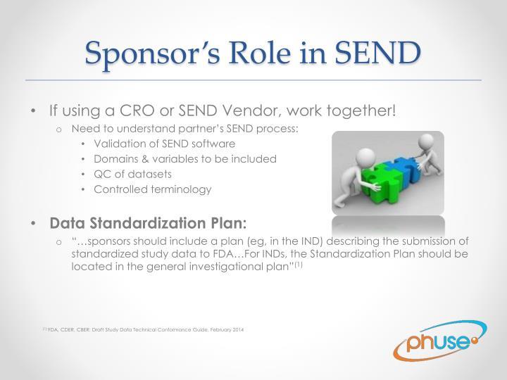Sponsor's Role in SEND
