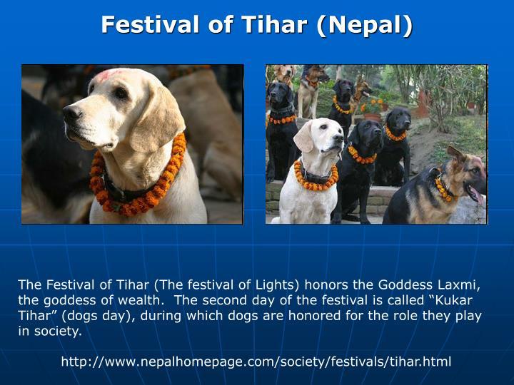 Festival of Tihar (Nepal)