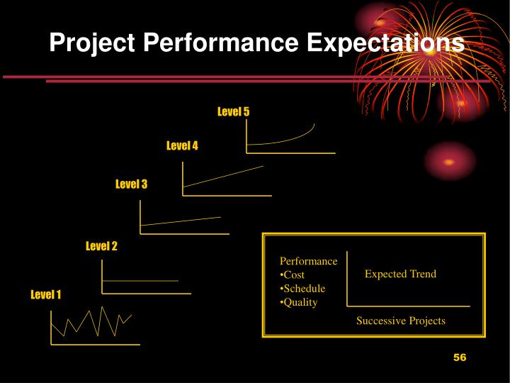 Project Performance Expectations