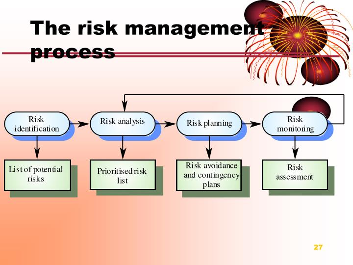 The risk management process