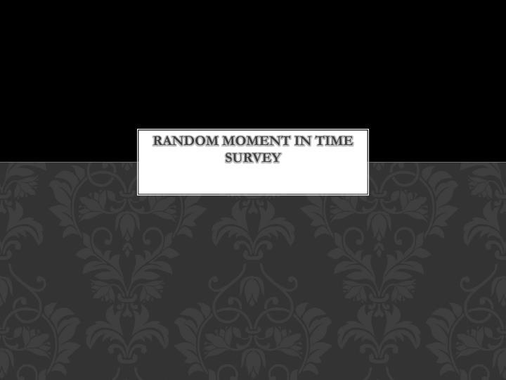 Random Moment in Time Survey