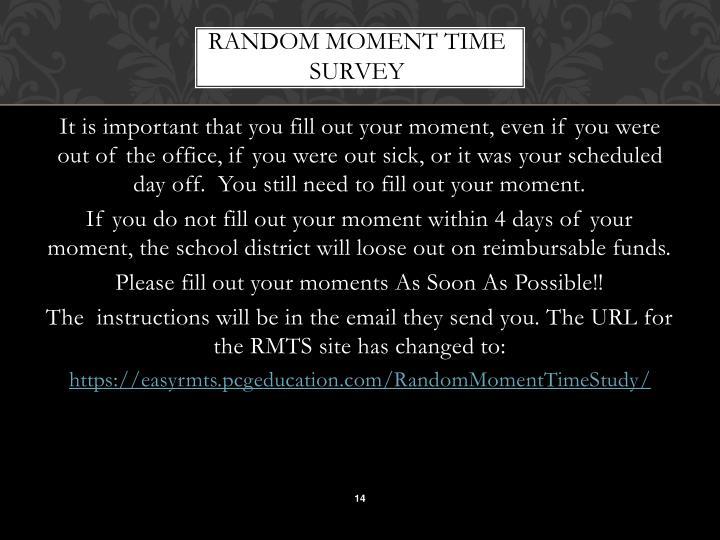 RANDOM MOMENT TIME SURVEY