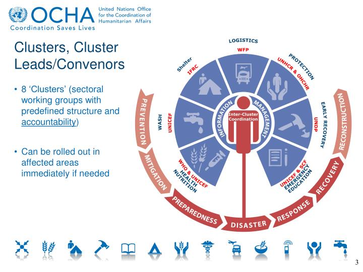 Clusters, Cluster Leads/