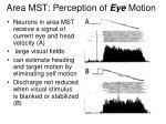 area mst perception of eye motion