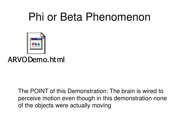 Phi or Beta Phenomenon