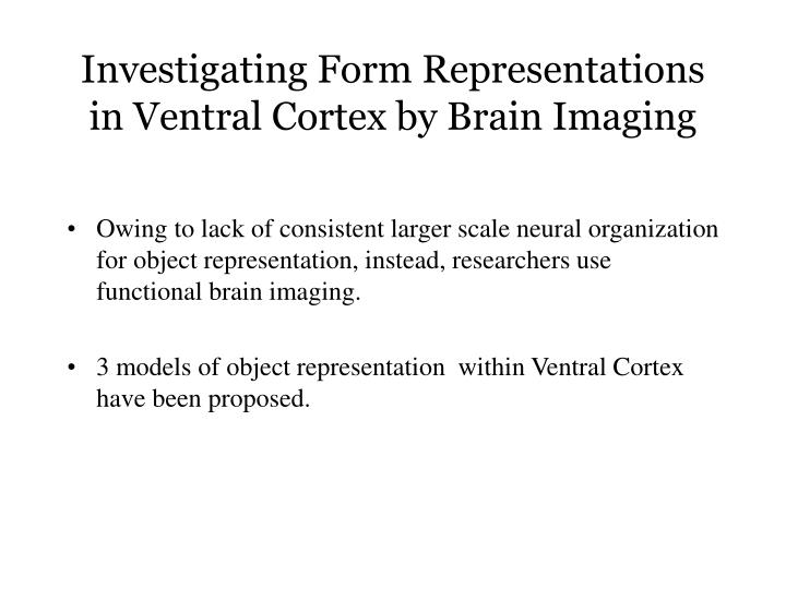 Investigating Form Representations in Ventral Cortex by Brain Imaging