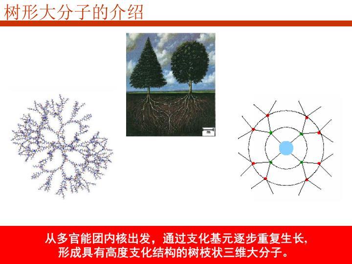 树形大分子的介绍