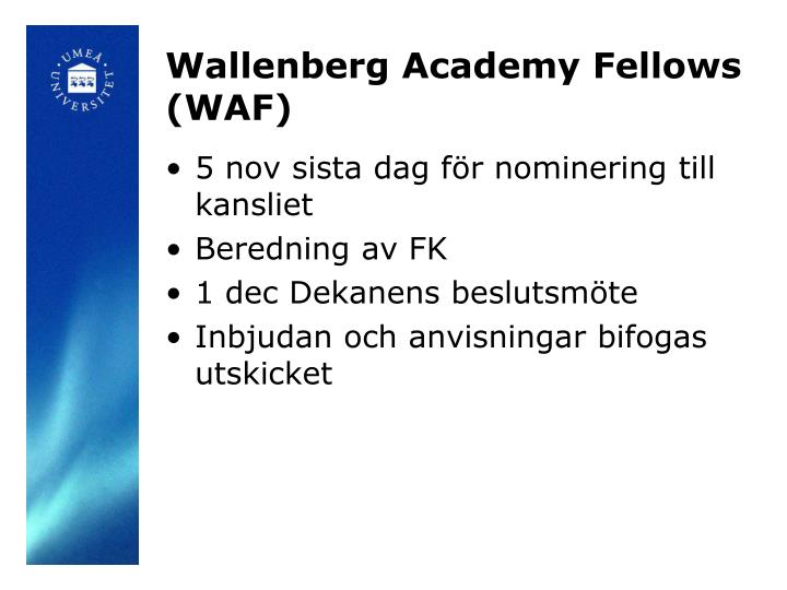 Wallenberg Academy Fellows (WAF)