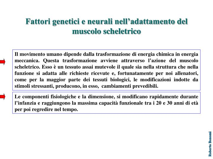 Fattori genetici e neurali nell'adattamento del