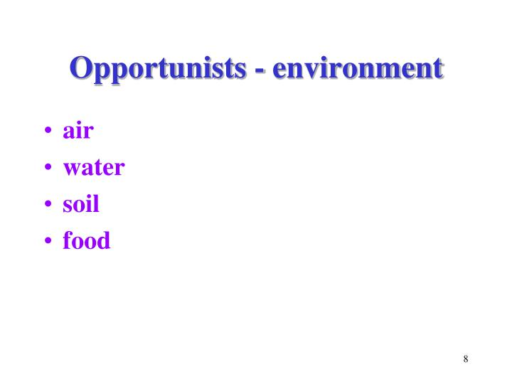 Opportunists - environment
