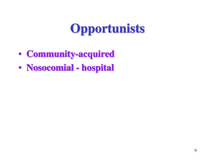 Opportunists