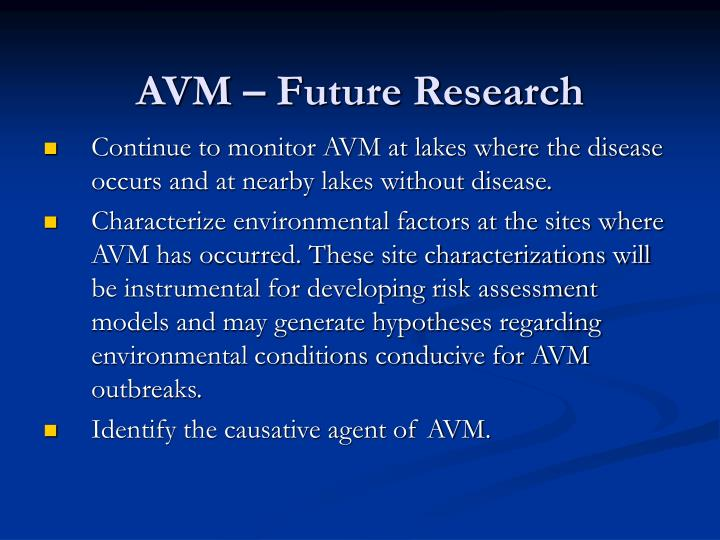 AVM – Future Research